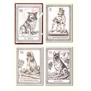 Cani Originali Tarot (Mini Cani Menegazzi)